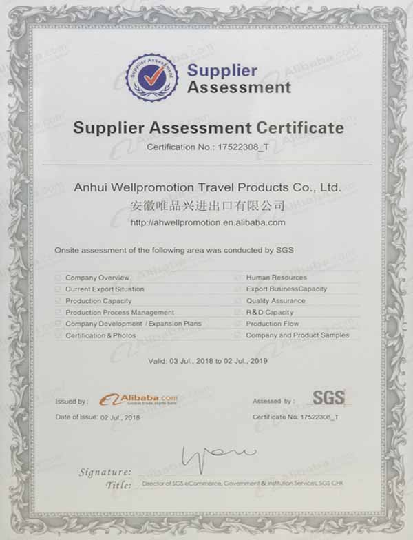 SGS Supplier Assessment Certificate
